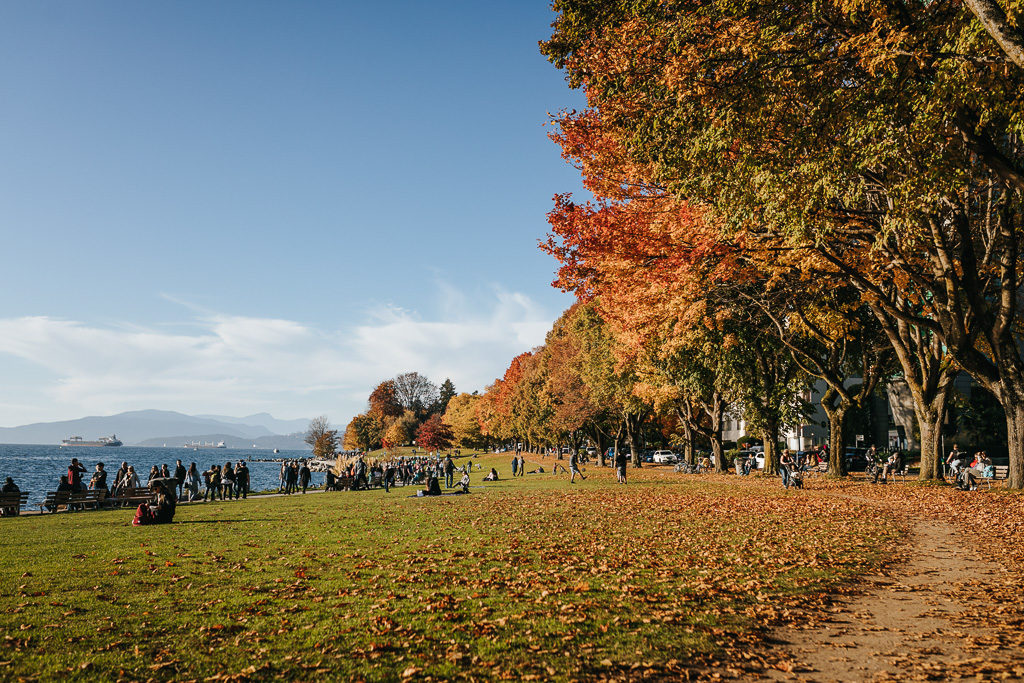 English Bay in the fall with orange and yellow and red leaves