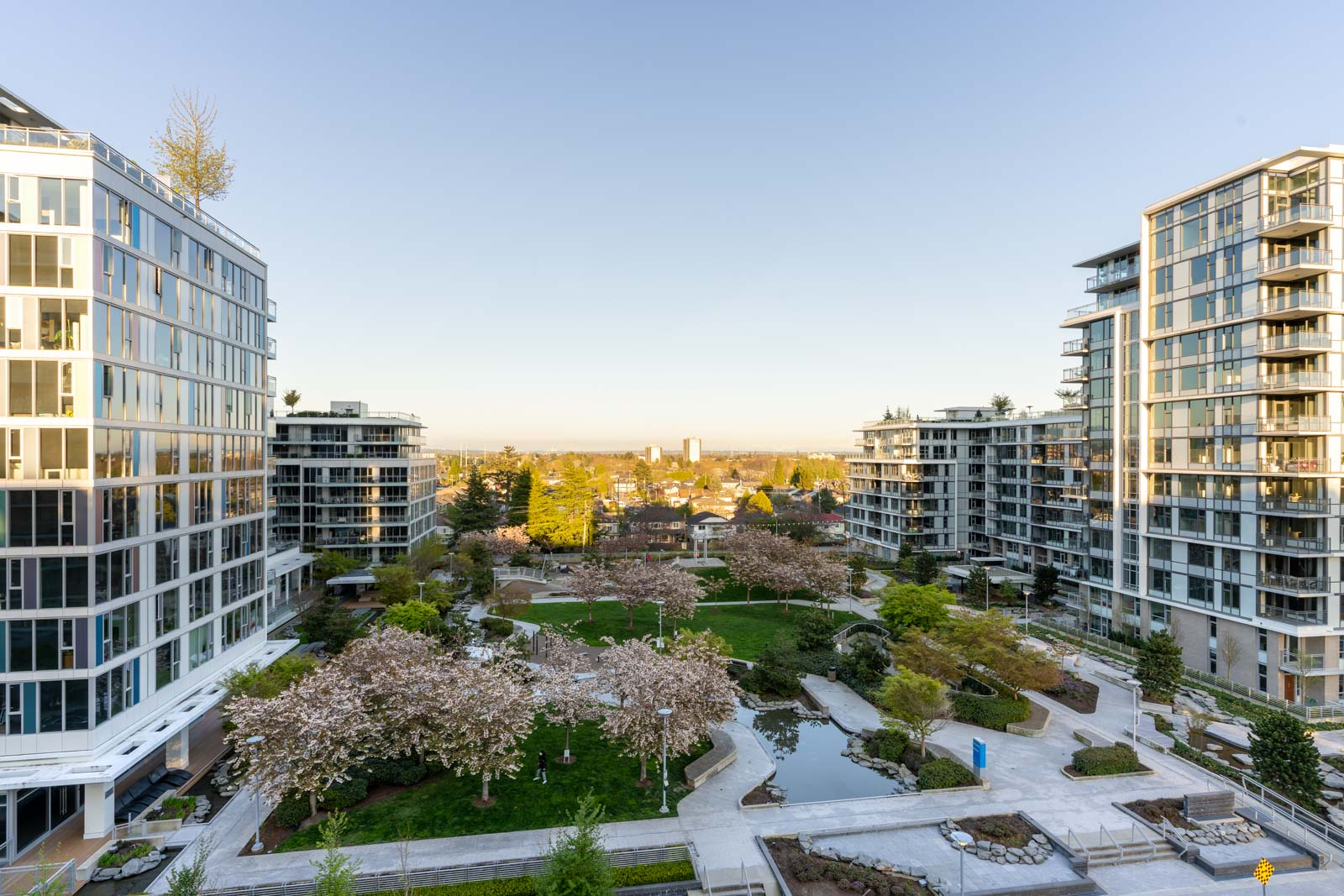 view from balcony at a cherry blossom trees and green grass
